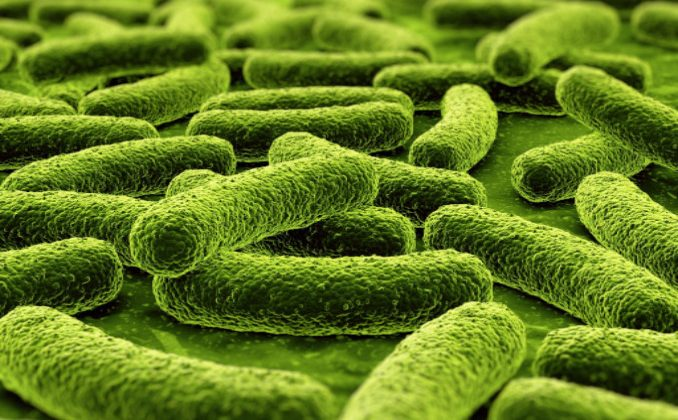 Ohio Family Sues Medical Group Over Misdiagnosis of Flesh-Eating Bacteria